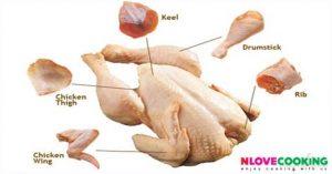 เนื้อไก่ ส่วนประกอบของไก่ เนื้อไก่ส่วนต่างๆ ไก่